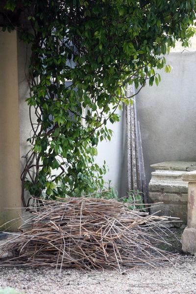 Jardin cleaning