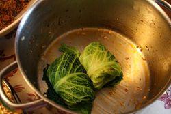 Stuffingcabbage