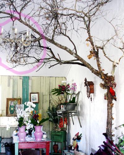 Chandelier in a tree
