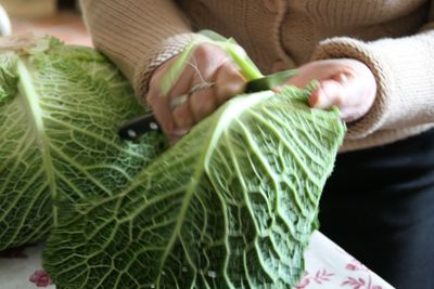 Trimming-cabbage