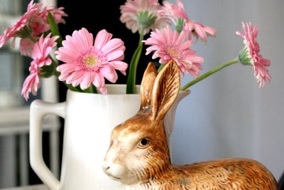 some pink flowers with a rabbit