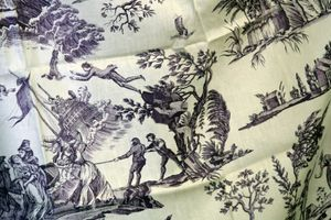 French-toile-fabric