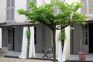 La-Madone-garden