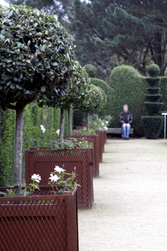 French-man-in-park