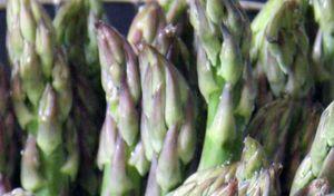 Tips of asparagus