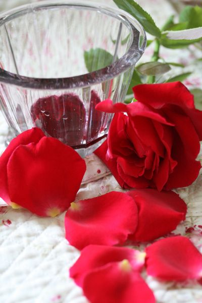 Red rose jelly