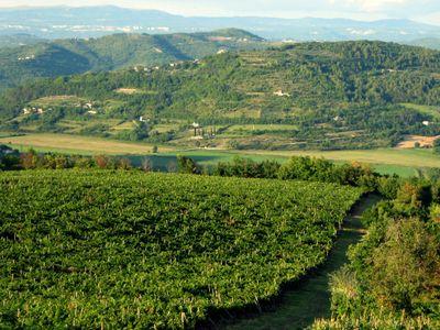 Croatia hillside motovun