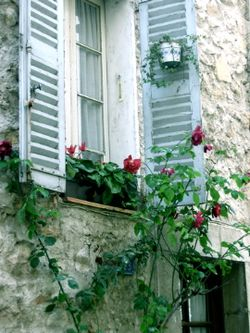 blue shutters with flower box