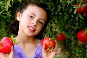 a-million in the tree Pomegranates