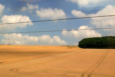 Wheat fields in France