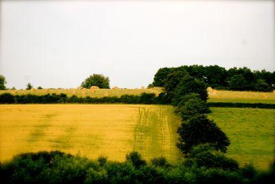 Fields of France