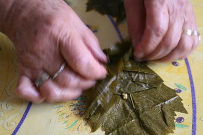 folding and rolling grape leaves