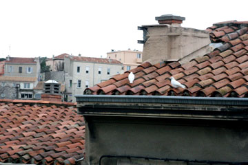 French-rooftop