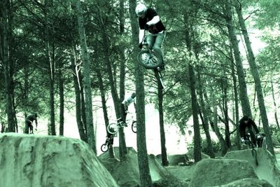 BMX dirt in the forest France