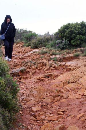 Rocky-path