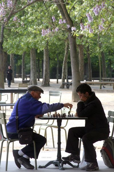 Paris-chess-in-the-park