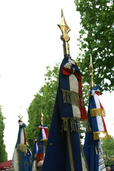 Flag-tops,