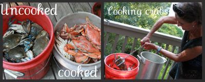 Cooking crabs