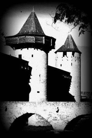 Towers carcassonne