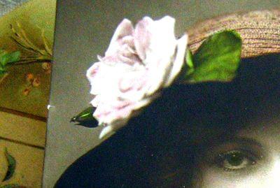 Rose-dreams