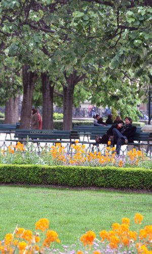 Sitting-on-the-park-bench