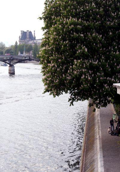 Seine-river-Paris