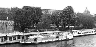 Boats-pont-neuf