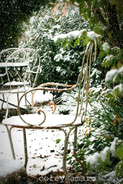 Garden chair in the snow