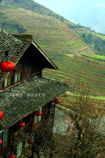 Houses longsheng