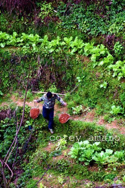 Working longsheng