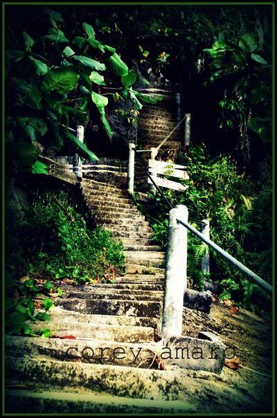 Plaa's stairs