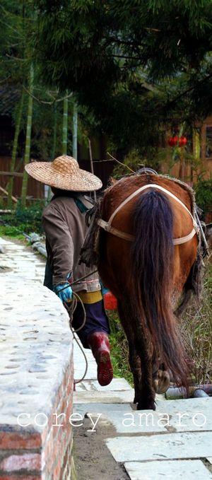 Path longsheng