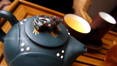 Blue frog tea pot