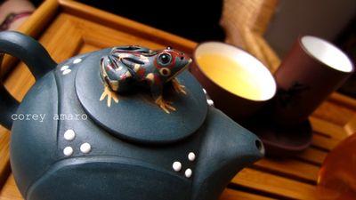 Blue frog tea pot