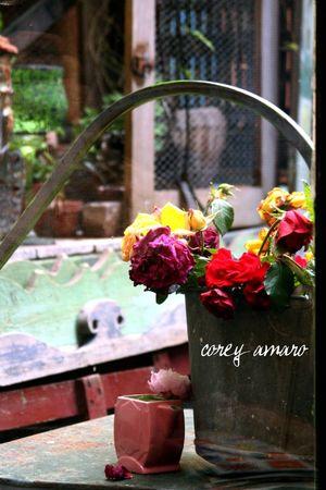 Wilting flowers in a bucket
