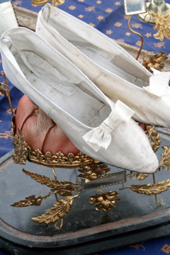 Silk-shoes