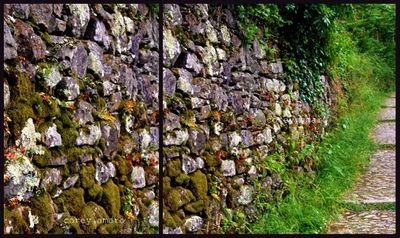 Stone wall in france