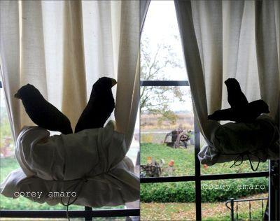 Bird nest curtains