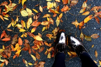 Leaves and metallic shoes