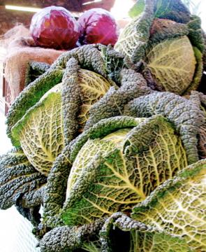 Three-cabbage