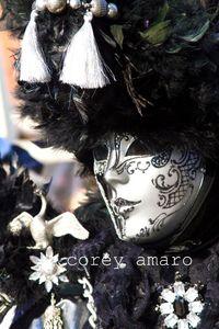 Venice carnival black swan mask