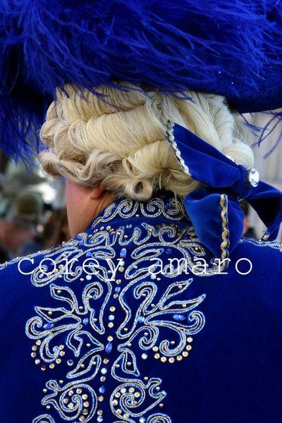 Carnival Venice in blue