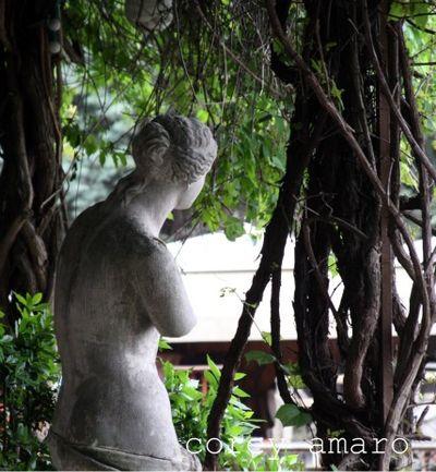 Into the garden of delight