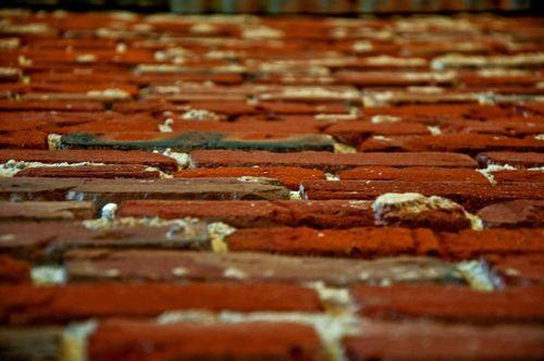 Holly-bricks