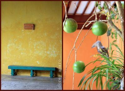 Yucatan colors