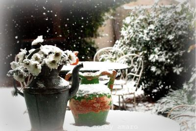 Snow in provence
