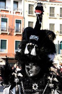 Black swan mask carnival