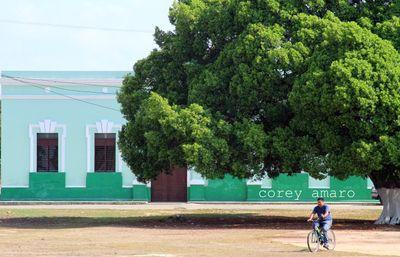 Green in Merida