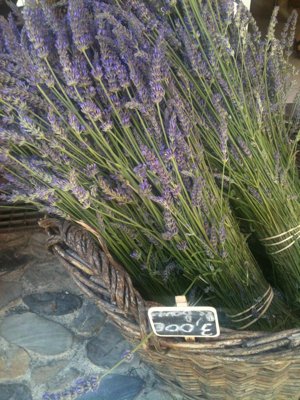 Day Tripping: Lavender Fields Starting with Lunch