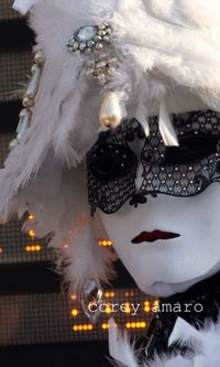 Feathers and lace mask